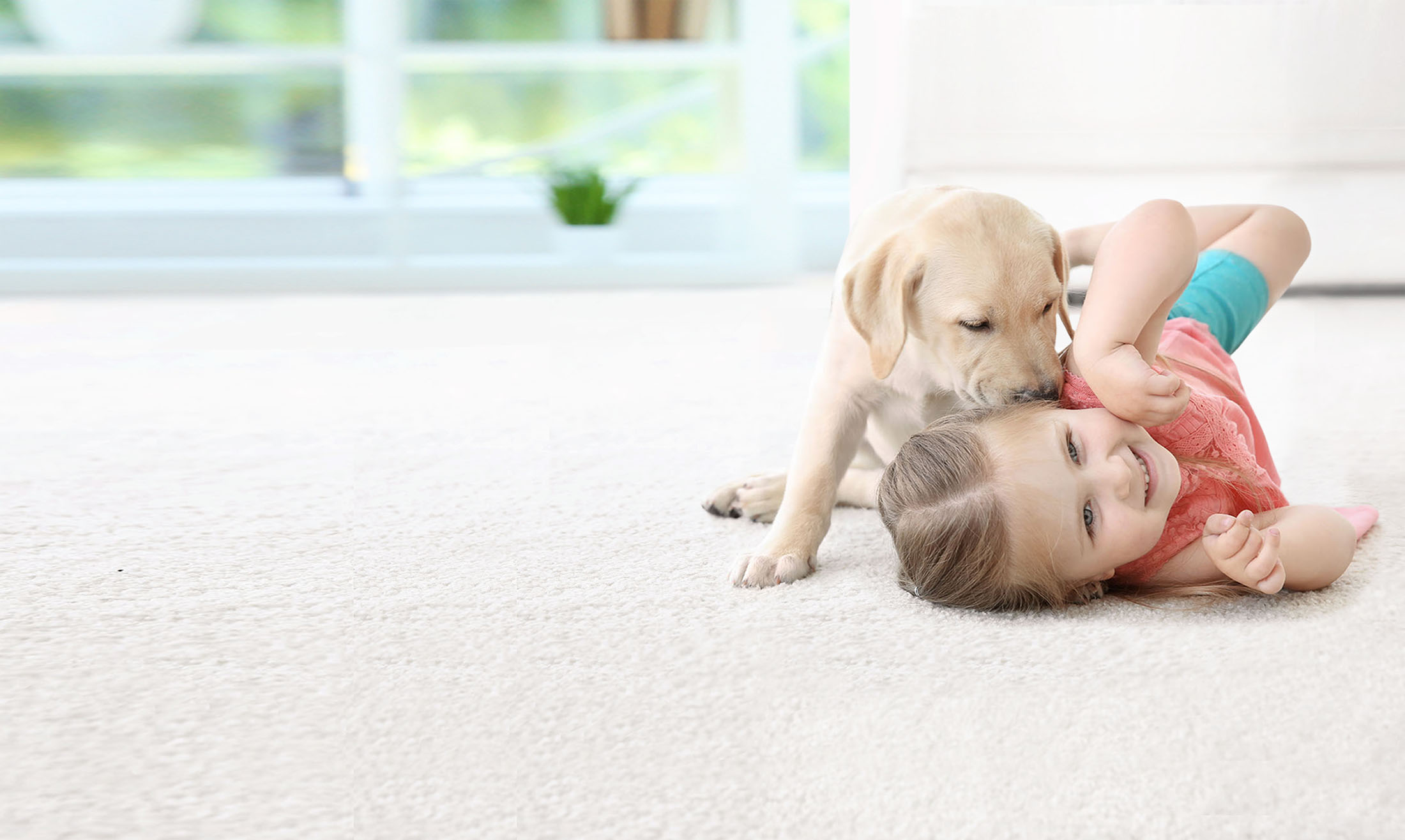 girl and dog on a clean carrpet in las vegas by triple j carpet cleaning company las vegas