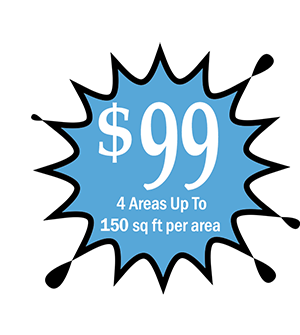 Carpet Cleaning for only $99